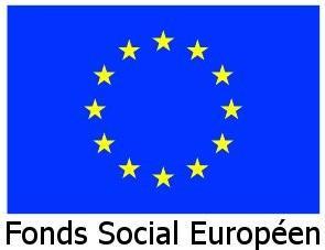 Fond Social Européen de France